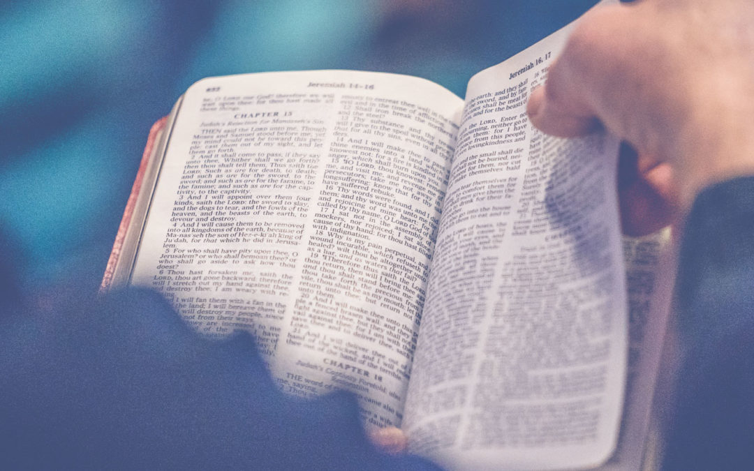 What is Biblical Studies or Biblical Literature? – Degrees at Boise Bible College